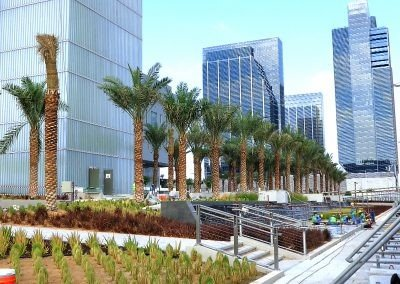 Cleveland Clinic Hosptial with palm tree installed using eyebolt fixing systems