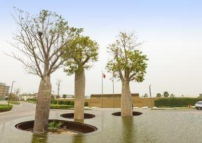 Jumeirah Bay Island Baobab trees - installed with Platipus tree anchors