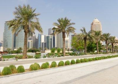 Sheraton Park, Doha - Qatar row of Palm trees