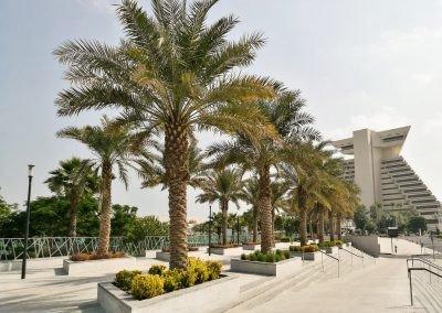 Public Green Space – Sheraton Park, Doha