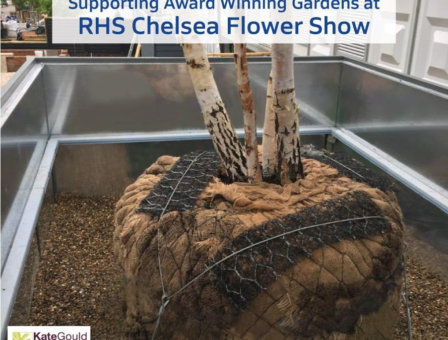 Congratulations to all the Award Winners at RHS Chelsea Flower Show