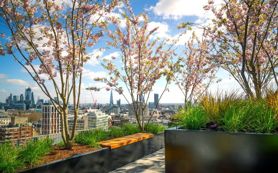 Some beautiful shots showcasing the roof garden of The Post Building in London.