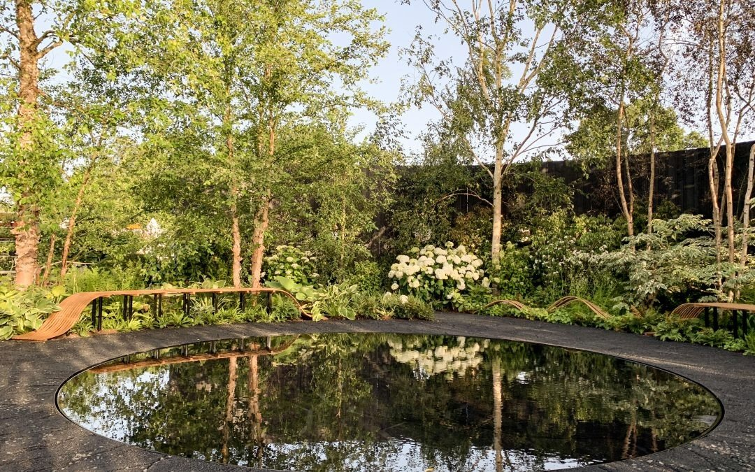 Smart Meter Garden – RHS Hampton Court Flower Show