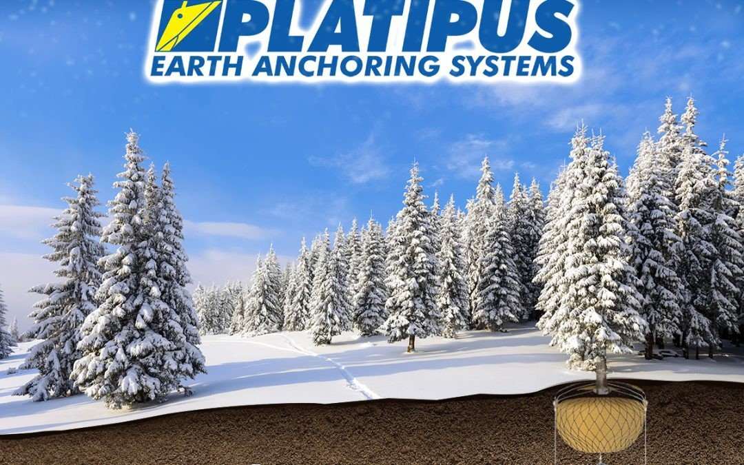 The Platipus team would like to wish you a Happy Christmas and a very successful 2020