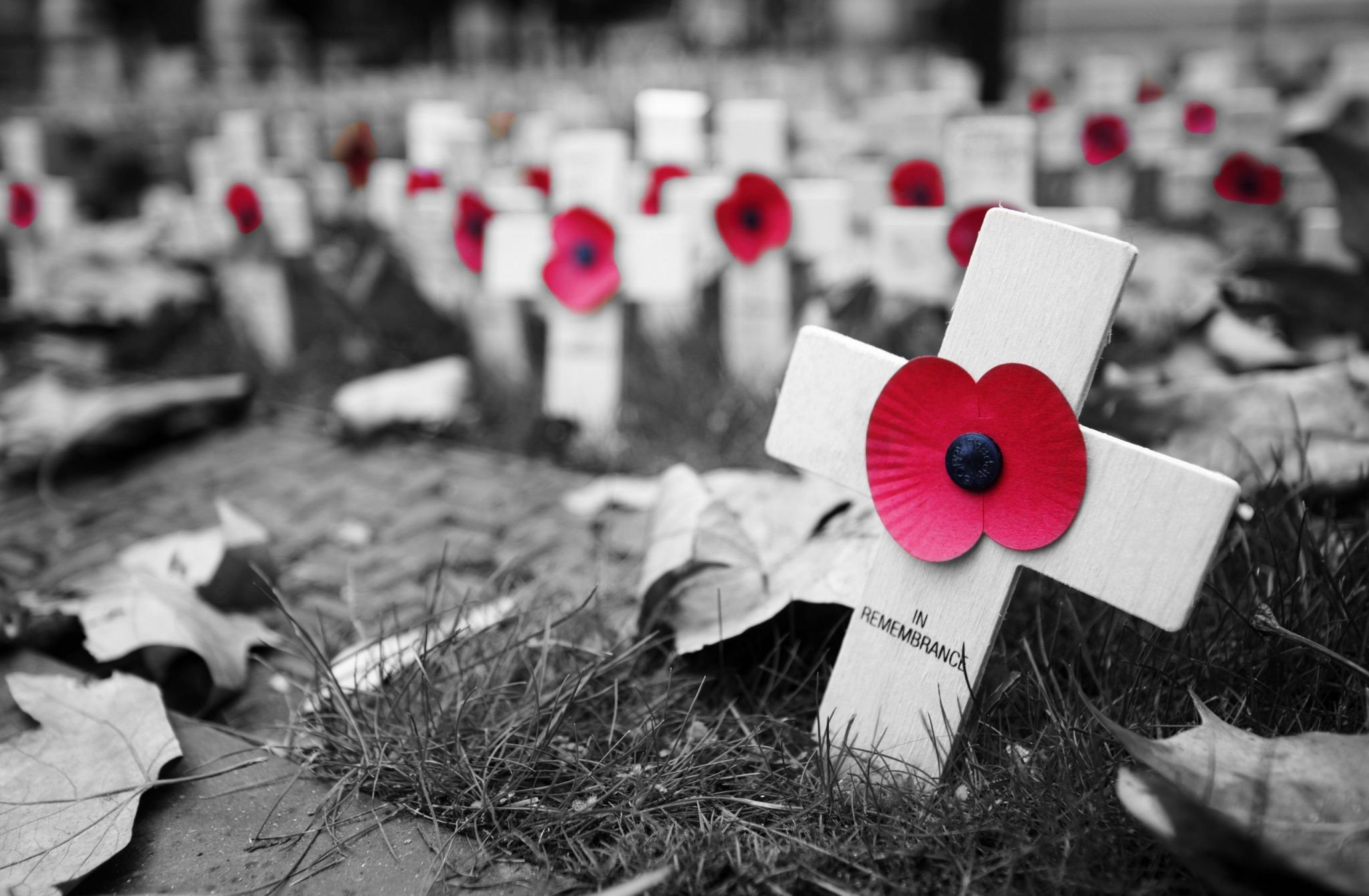 Platipus remembers the Fallen