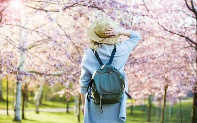 We supportNational Trust's 5 year initiative to plant circles of blossom trees in cities across the UK