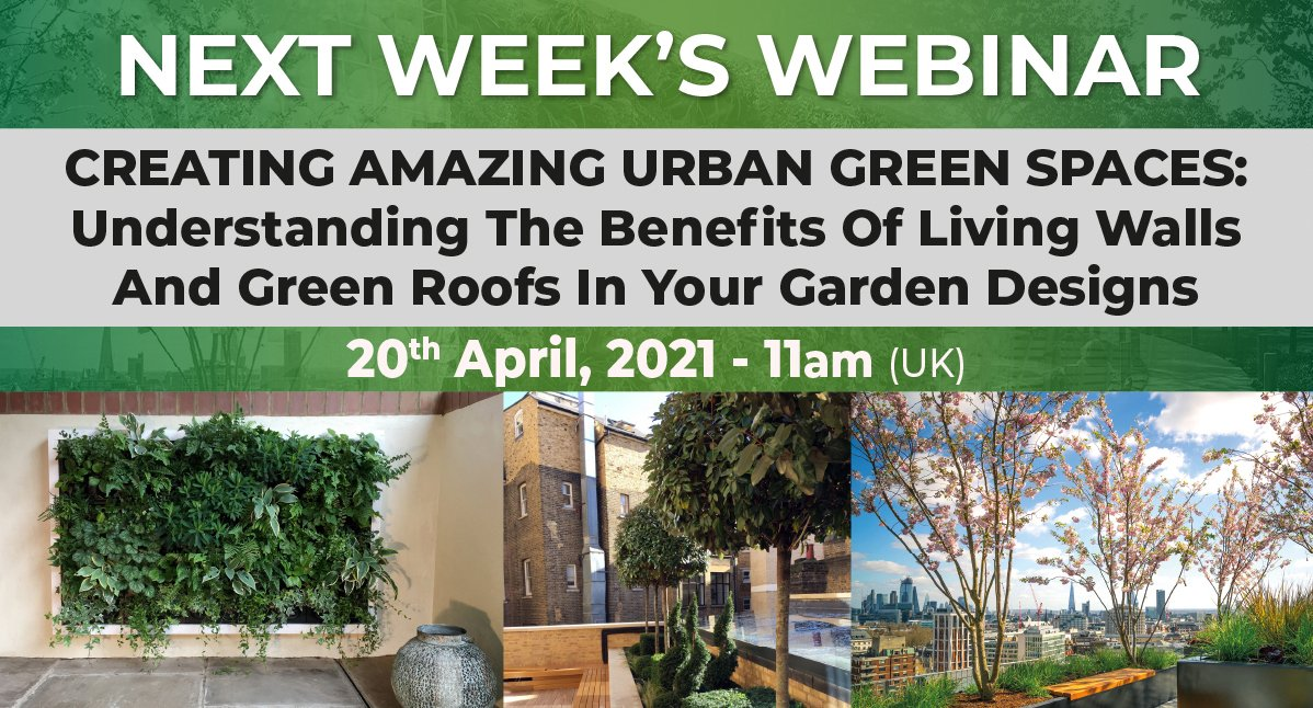 Creating Amazing Urban Green Spacing
