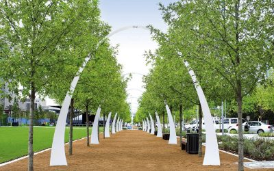 Platipus Tree Anchoring Systems provided the needed support at Klyde Warren Park