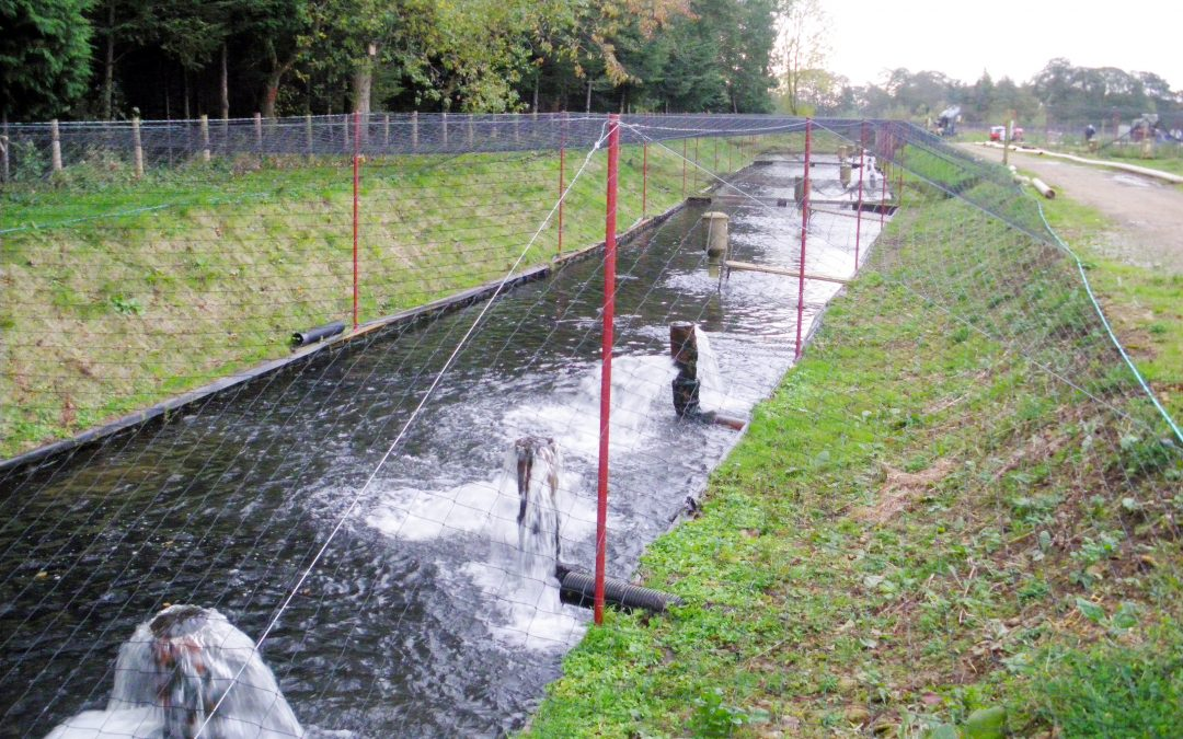 Ground anchors secure the heavy duty netting